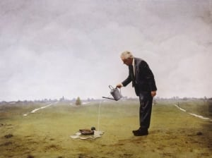 Teun Hocks duck