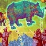 Durer Crypto rRhino