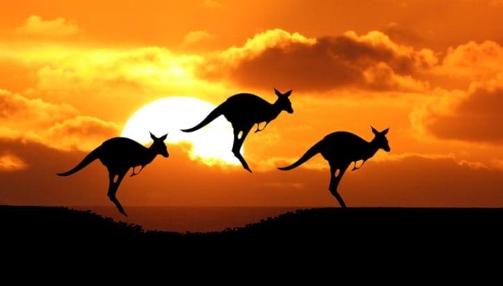 IBM подписала контракт с Австралией на развитие блокчейн-технологий на $740 млн