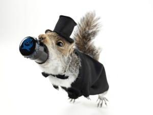 Компания Brewdog открыла новый бар в котором принимают биткоины