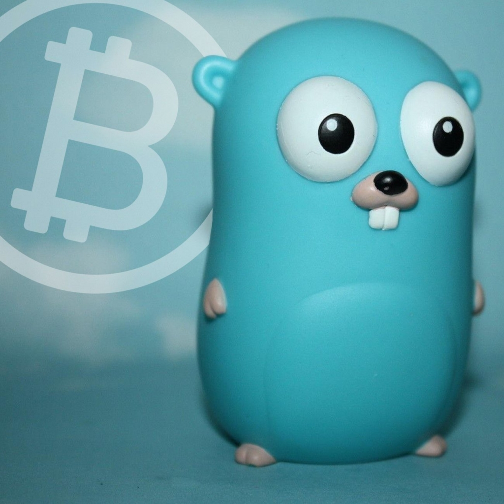 Разработчик Bitcoin Cash создал клиент для полного узла сети на языке Golang