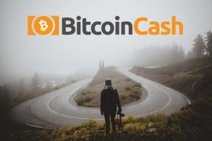 Поддержка Bitcoin SV среди трейдеров и майнеров растет