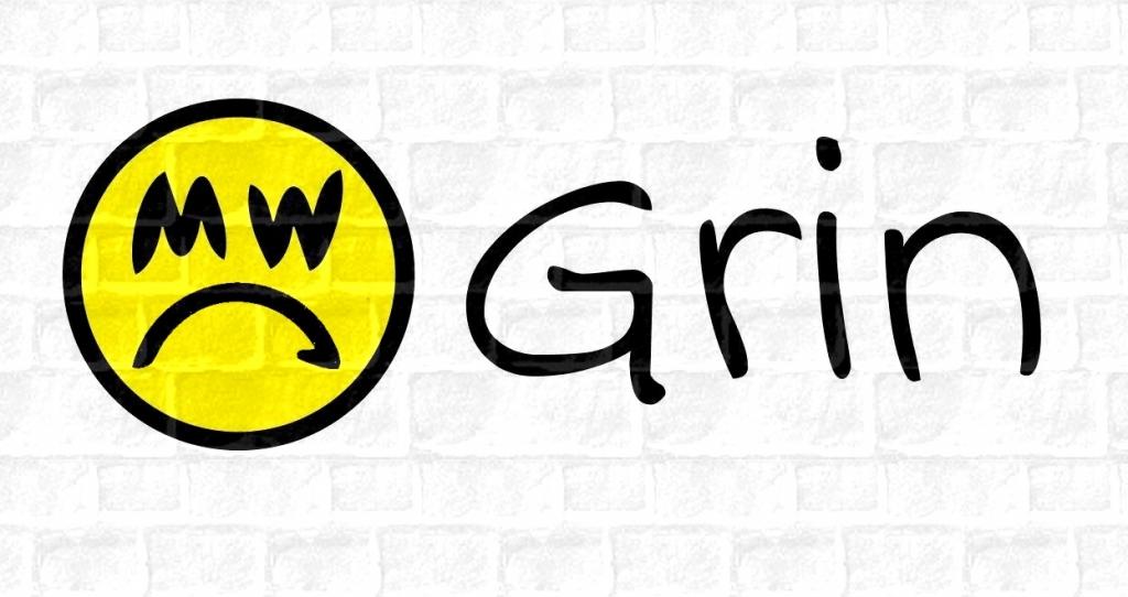 Разработчики Grin разочарованы нездоровым ажиотажем вокруг проекта