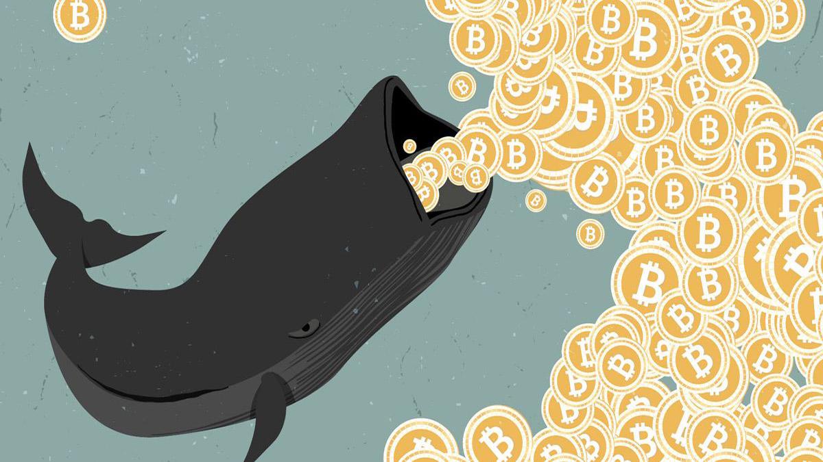 Крупные игроки выводят биткоины с криптовалютных бирж