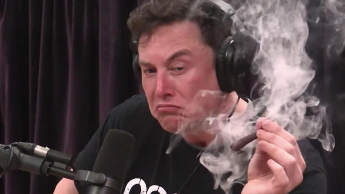 Маск есть яд, и Маск есть лекарство. Илон Маск уронил биткоин одним твитом