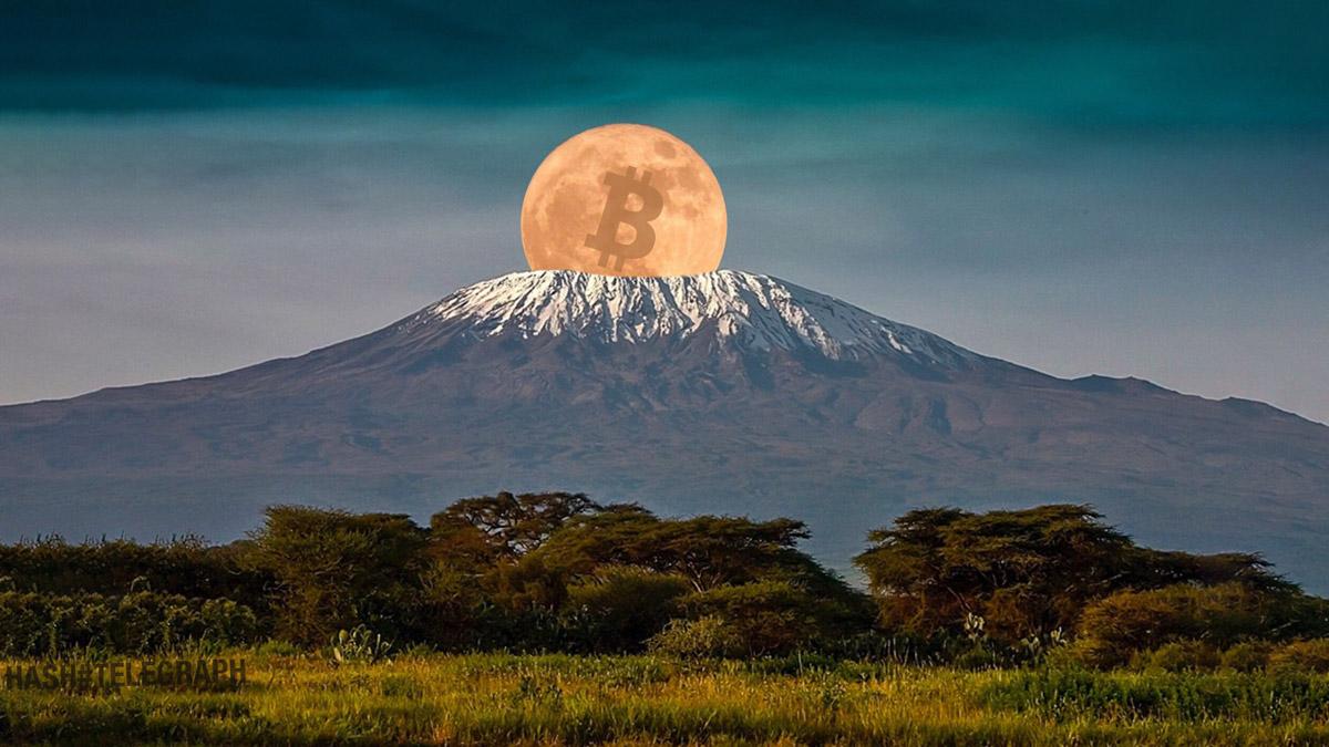 Центробанк Танзании объявил о подготовке к принятию криптовалют