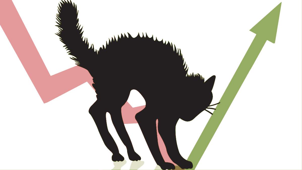 Биткоин: отскок дохлой кошки или бычье ралли?