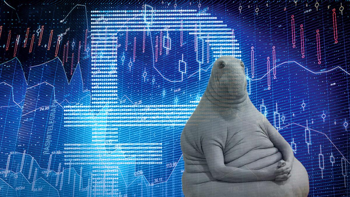 Цифрового рубля придется подождать до 2030 года — правительство РФ